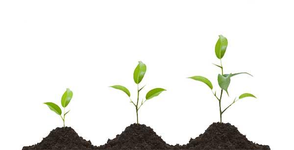 رشد و پیشرفت شخصی