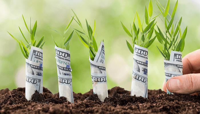 رسیدن به موفقیت مالی