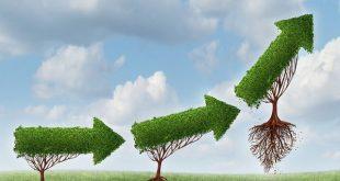 رشد کسب و کار کوچک